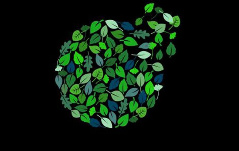 Coming together to thrive together: Deloitte's 2021 DEI Transparency Report